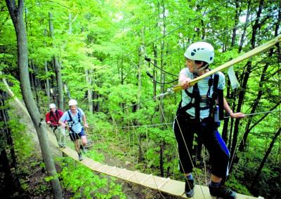 g-scenic-caves-treetop